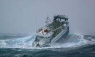 Laivelis prieš jūros šėlsmą