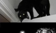 Šėtoniška katė