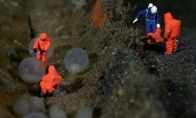 Povandeninis akvariumų gyvenimas