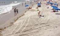 Niu Džersio paplūdimys prieš ir po Irenos