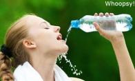 Vandens gėrikės