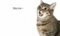 Kačių kalba