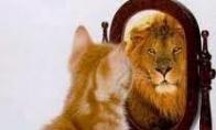 Veidrodėli, veidrodėli