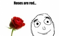 Rožės raudonos