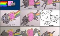 Nyan katės