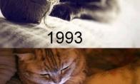 21 metų skirtumas