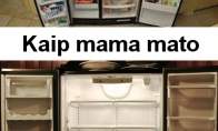 Šaldytuvo dėsnis