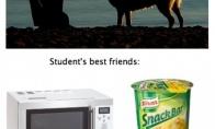 Geriausių draugų skirtumas