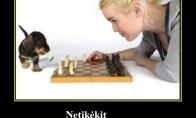 Blondinės ir šachmatai