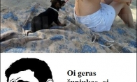 Geras šunėkas