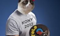 Visi 2012-ieji viename paveiksliuke