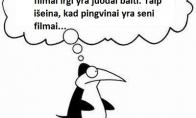 Pingviniška logika