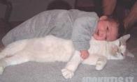 Vaikai ir katinai