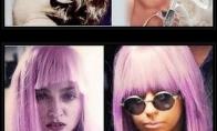 Lady Gaga - plagiatorė