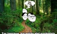 Baisiausia kas gali nutikt miške