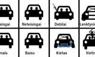 Pasaulio pažinimas: vairuotuojai ir keleiviai