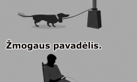 Žmogaus ir šuns panašūmai