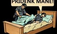 Policijos priedanga ne darbo metu