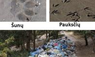 Žemės gyventojų pėdsakai