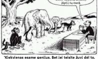 Didžiausia švietimo sistemos spraga