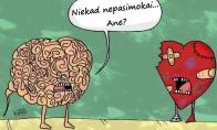 Kvailiausias žmogaus organas