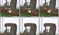 Katino Pūkio dienotvarkė