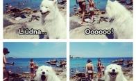 Vyrų džiaugsmas paplūdimyje