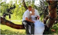 Vestuvių gadintojų GIF rinkinukas