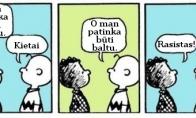 Kaip rasizmas atrodo iš šalies