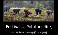Vasaros pabaigos festivalis
