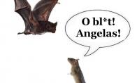 Pelių angelas sargas