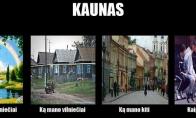 Visa tiesa apie Kauną