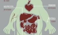 Tavo organų vertė juodojoje rinkoje