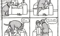 Šuniška logika