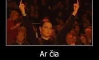 Tarptautinė gestų kalbos pamokėlė