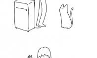 Tipinis katinas po šeimininko atostogų