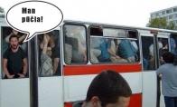 Autobusų lervos