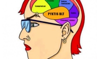 Feministės smegenų sandara