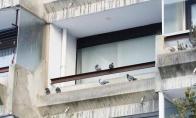 Kas nutinka, kai išvykdamas palieki pravirą langą
