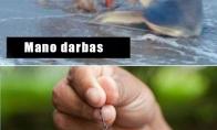 Darbas vs alga