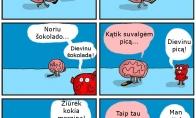 Kaip smegenys širdį tramdo