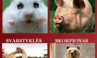 Koks tu žvėris lovoje pagal zodiako ženklą?