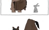 Gyvūnėliai ruošiasi Helouvynui