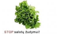 STOP salotų žudymui!