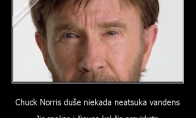 Chuck Norris žvilgsnio galia
