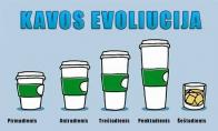 Kavos evoliucija