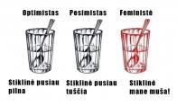 Feminizmo esmė