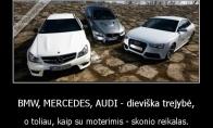 TOP 3 automobiliai