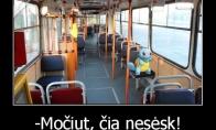Viešojo transporto problemos
