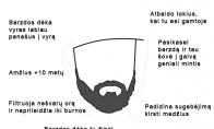 Faktai apie barzdą